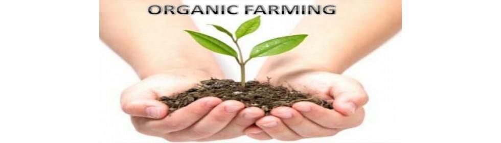 organic20