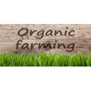 organic16